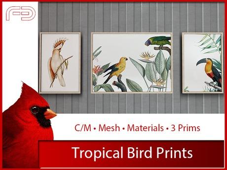 [FB] Tropical Bird Prints