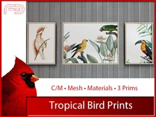 [FB] Tropical Bird Prints