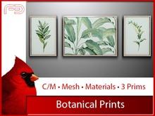 [FB] Botanical Prints