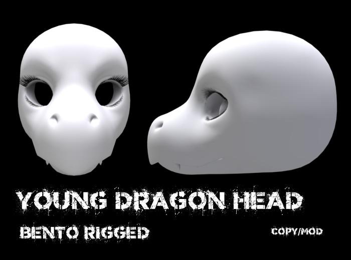 !Boneworks! > Young Dragon Head (boxed)