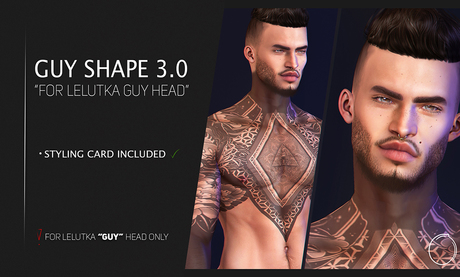 """Lelutka Head """"GUY"""" Shape 3.0"""