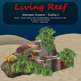 Inochi Reef - Atlantean Rubble C (dinner)