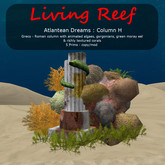 Inochi Reef - Atlantean Column H