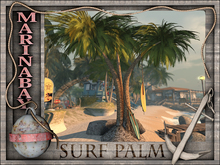 palm surf