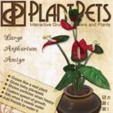 PlantPet Seed [Large Anthurium *Amigo*  Updated2019