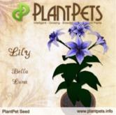 PlantPet Seed [Lily *Bella Luna*]