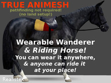 Riding Horse Wearable Wandering Animesh / black
