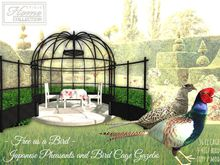 Pheasant,bird,cage,gazebo