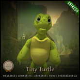 [C] Animesh Follower - Tiny Turtle (Wear)