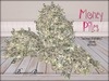 Boudoir Money Piles