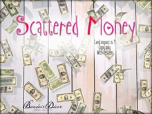 Boudoir Mesh Scattered Money