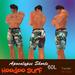 Apocalypse shorts by Hoodoo Surf