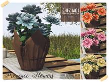 Provence Flowers ♥ CHEZ MOI