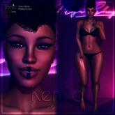 Tonic Elaine bento - Kenya shape (Add)