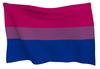 Prideflagbi