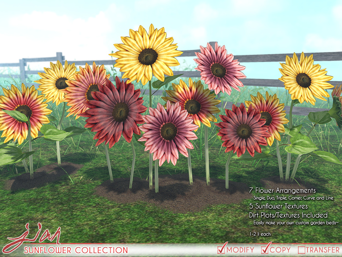JIAN Sunflower Collection