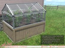 JIAN Mini Greenhouse :: Tomato