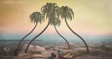 LB Caribbean Palm Animated Mesh