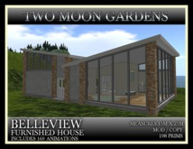 TMG - BELLEVIEW FURNISHED HOUSE with 169 animtions