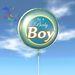 Balloon - It's A Baby Boy - Transfer - Xntra City Balloons