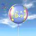 Balloon - It's A Boy - Transfer - Xntra City Balloons