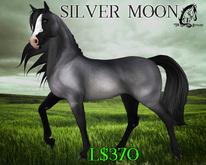 Silver Moon [Teegle Skin Applier] - The Celtique Stallion