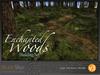 Skye enchanted woods v3 3
