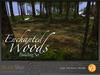 Skye enchanted woods v3 4