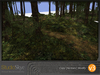 Skye enchanted woods v3 5