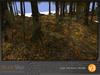 Skye enchanted woods v3 7