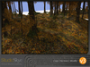 Skye enchanted woods v3 8