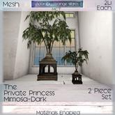 ~ASW~ The Private Princess Mimosa -Dark