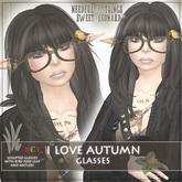 I LOVE AUTUMN Glasses