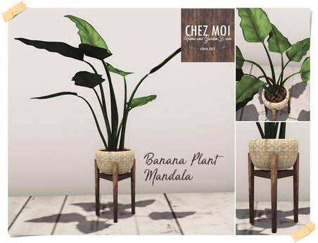 Banana Plant Vase ♥ CHEZ MOI