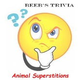 Beeb's Trivia - Animal superstitions