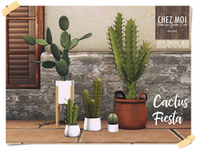 Cactus Fiesta Set ♥ CHEZ MOI