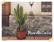 Cactus Terracotta ♥ CHEZ MOI