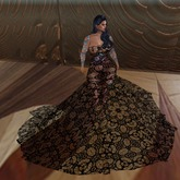 Delicate Lace Ball Gown Boxed