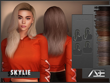 Ade - Skylie Hairstyle (Browns)