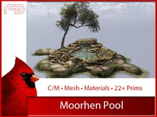 [FB] Moorhen Pool (Boxed)