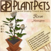 PlantPet Seed [Rose *Moonstone*] Updated 2019