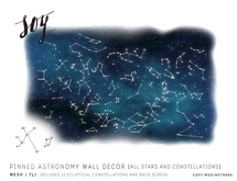 Soy. Pinned Astronomy Wall Decor [addme]