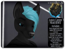.:C:. Lupus Bento Head - Male Version of the Canis Head