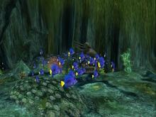 School of Fish 1 PROMO
