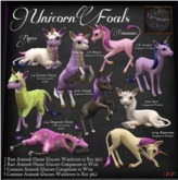 14. *HEXtraordinary* Unicorn Foal - Buttercream Wanderer