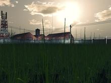 Grass Mesh - Low prim - 1 prim each