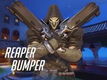 Reaper Bumper