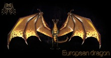 European dragon[BOX] - i monster