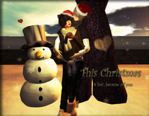 .::Y&R::. Design ~This Christmas~ couple pose(boxed)