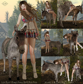 Lush Poses - Donkey Female Bento Pose Pack